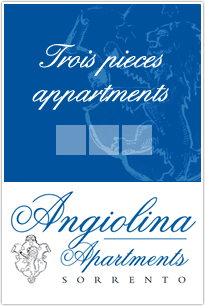 Angiolina Apartments - Trois Pieces Appartements